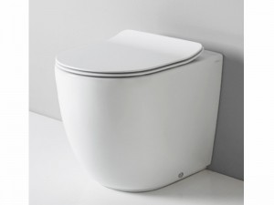 Artceram File floor rimless toilet with soft close toilet seat in matt white FLV00505