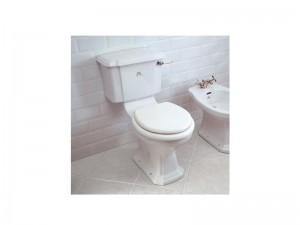 Lefroy Brooks Lissa Doon floor toilet LB7507